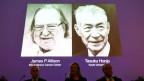 Bilder der Nobelpreisträger für Medizin 2018, James P. Allison (li) aus USA, und Tasuku Honjo aus Japan an der Pressekonferenz von Karolinska-Institut in Stockholm.