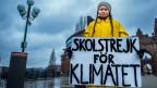 Die 15-jährige Schwedin Greta Thunberg protestiert gegen den Klimawandel.