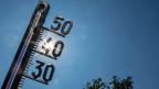 Rekord-Temperaturen am 24. Juli 2019 in Hessen, Deutschland. Symbolbild.
