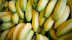 Bananen. Symbolbild.
