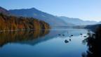 In der Gegend rund um den Greyerzersee treffen Alpinisten und Radioleute auf den Seislerdialekt.