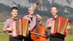 Die drei Musiker des Ländlertrios in karierten Hemden und mit ihren Instrumenten auf einer Wiese.
