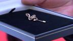 In der Schweizer Volksmusikszene eine begehrte Auszeichnung: Der Goldene Violinschlüssel.
