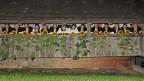 Die Mitglieder des Sunnechörlis haben alle ihren eigenen Stammchor.