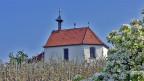 Eine kleine weisse Kapelle in der blühenden Natur.