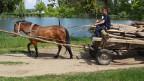 Ein Pferd zieht einen Wagen.