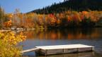 Ein kleiner See mit Steg umgeben von herbstlich gefärbten Bäumen.