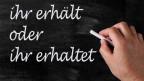 Audio «Gramattikalische Tücken für Schweizer» abspielen.