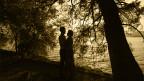 Ein Liebespaar unter Bäumen am Ufer eines Sees.