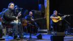 Die Krüger Brüder bei einem Konzert.