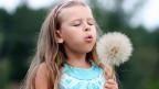 Ein Mädchen mit einer grossen Pusteblume.