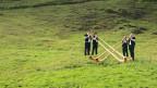 Vier Alphornbläser auf einer Weide.