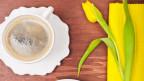 Ein Kaffee und eine Tulpe liegen auf dem Tisch.