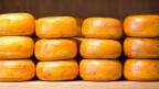 Käselaibe auf einem Holzgestell.