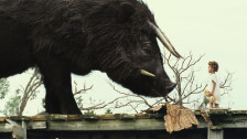 Audio ««Beasts of the Southern Wild» - Ein phantastischer Film» abspielen