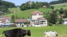 Audio «Vier von fünf Schlossrueder sagten Ja zur SVP-Initiative» abspielen