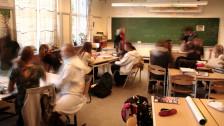 Audio «Integration an Berner Schulen - eine Zwischenbilanz» abspielen