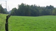 Audio «BLS will neue Werkstätte im Chliforst in Bern West bauen» abspielen