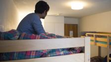 Audio «Kanton Bern nimmt Gemeinden im Asylbereich in die Pflicht» abspielen