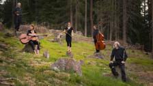 Laschar ir Audio «Walzerschmelz und Orgelpunkt - Ils Fränzlis sunan»