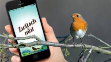 Laschar ir audio «Digitip – Telefonin gida d'enconuscher il chant d'utschels».