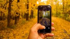 Laschar ir audio «Digitip – agid per far urden cun il caos da fotografias».
