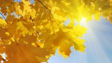 Audio «Der Monat November, ein Highlight!» abspielen