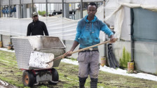 Audio «Sollen Flüchtlinge besser in den Arbeitsmarkt integriert werden?» abspielen