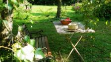 Audio «Bücher für die Gartenlaube» abspielen