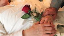 Audio «Sterbehilfe – eine Überforderung für die Angehörigen?» abspielen