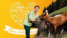 Audio «Emmentaler Rahmschnitzel von SRF-Landfrau Brigitte Wegmüller» abspielen.