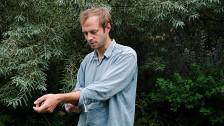 Audio ««acht schtumpfo züri empfernt» von Dominic Oppliger» abspielen