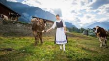 Audio ««Mein Lieblingsrezept» - «Ghackets mit Hörnli» von Landfrau Karin Caminada» abspielen.