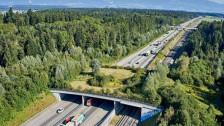Audio «Wildtierpassagen helfen Dachs und Wildkatze sicher über die A1» abspielen.