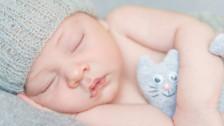 Audio «Ökologischer Blödsinn: Eltern ärgern sich über Wegwerf-Babyfotos» abspielen