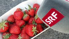 Audio «Eine Tonne Erdbeeren gerettet» abspielen