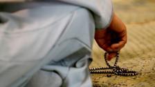 Audio «Unfair?! - Muslime unter Rechtfertigungszwang» abspielen