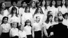 Audio «Abgeschoben, gedemütigt, missbraucht - protestantische Armenerziehung unter der Lupe» abspielen