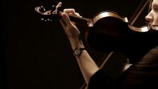 Audio «Im Konzert» abspielen