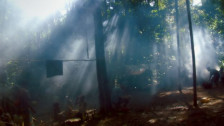 Audio «Song from the Forest, Victoria, Animationsfilmfestival Annecy» abspielen