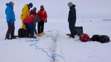 Audio «Serie Arktis (1/3): Das grosse Tauen im Polarmeer» abspielen