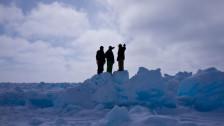 Audio «Serie Arktis (3/3): Die Inupiat, das Öl und die Wale» abspielen
