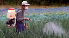 Audio «Machen uns Pestizide krank?» abspielen