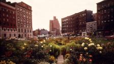 Audio «Bob Dylan 1961: New York City» abspielen
