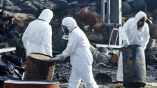 Audio «Der Brand von Schweizerhalle 1986» abspielen