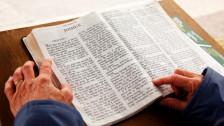 Audio «Die Bibel neu gelesen - als Tagebuch der Evolutionsgeschichte» abspielen