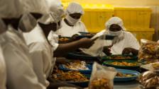Audio «Fair Trade? Zwischen Versprechen und Realität» abspielen