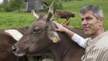 Audio «Adieu Nutztierhaltung - Ein Bauer steigt aus» abspielen