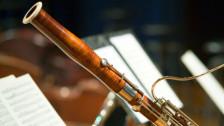 Audio «Bach, Sampling und Fagott - Gespräch mit Burak Özdemir» abspielen