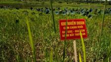 Audio «Der Vietnamkrieg – Krieg ohne Ende» abspielen
